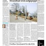 thumbnail of berner Zeitung Kopf der Woche, April 2010